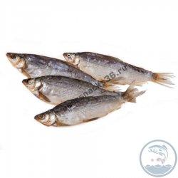 Рыба вяленая Пелядь крупная 1 кг