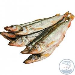 Рыба вяленая Корюшка З 25+ кг